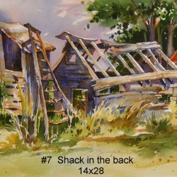 Shack in the back | Price: $400 | 28x14